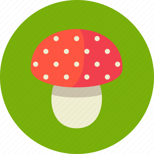 amanita, mushroom, poison, toxic icon