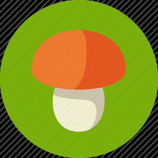 food, mushroom, porcini icon