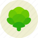 cabbage, food, salad, vegetable icon