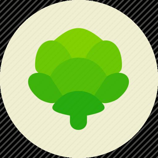 cabbage, food, salad, vegetable icon