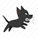 angry, bark, dog, hostile, joijoi, puppy