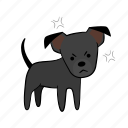 angry, dog, joijoi, mad, puppy, rage