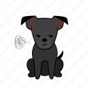 angry, annoyance, dog, joijoi, mad, puppy