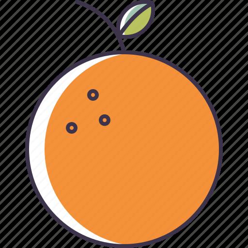 fruit, orange icon