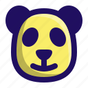 animal, bear, head, mammal, panda, zoo