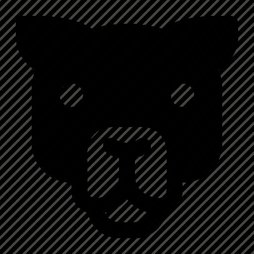 Animal, camel, desert, face, humps icon - Download on Iconfinder
