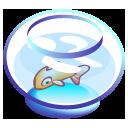 bowl, fish