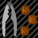 christmas, cracker, nut, nutcracker, soldie icon