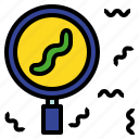 definite, exact, glass, magnifying, specific, worm icon