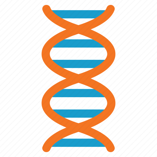 biology, dna structure, genetic engineering, genetics, genome chain, science, spiral molecule icon