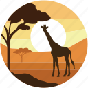 jungle, summer, tree, wildlife, sun, forestland icon