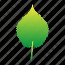 leaf, leaves, plants, set icon