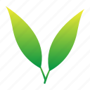 green, leaf, leaves, plants, set, shoots, tea, yellow icon