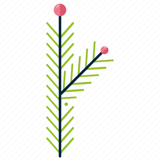 bipinnate, forest, leaf, pine, shape, tree icon