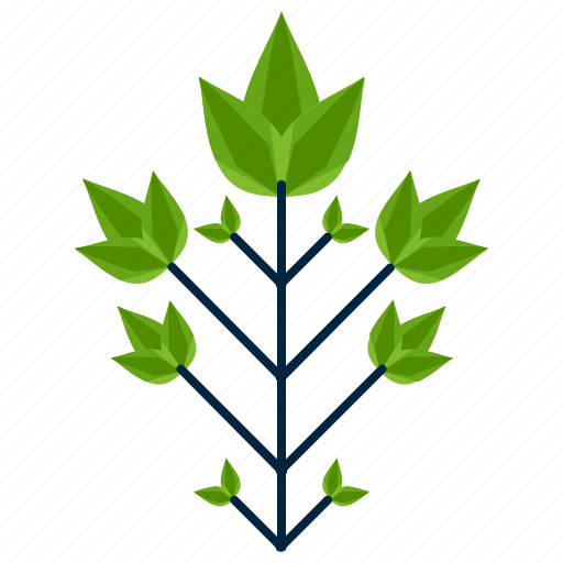 bipinnately, forest, leaf, park, shape, tree icon