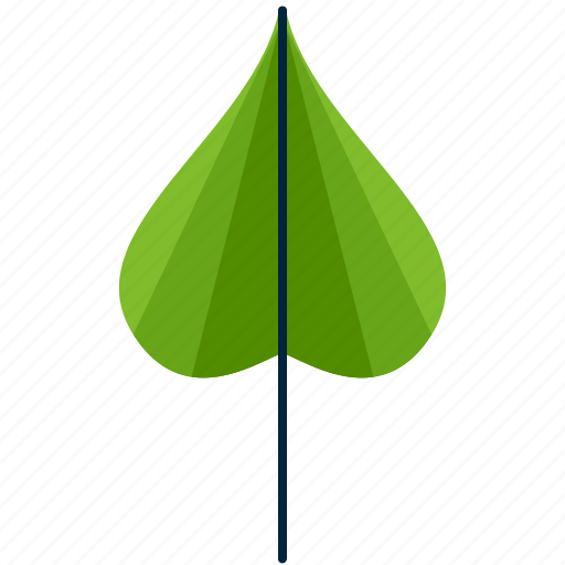 cordate, forest, leaf, park, shape, tree icon