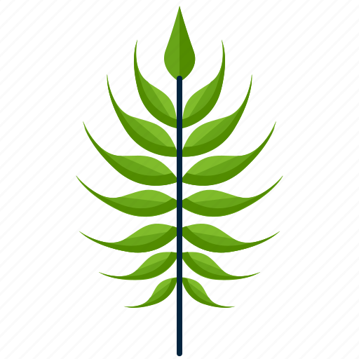 forest, leaf, linear, nature, park, shape, tree icon