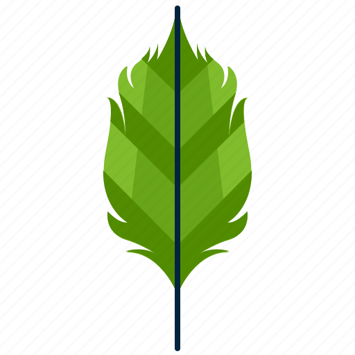 forest, leaf, nature, ovate, park, shape, tree icon