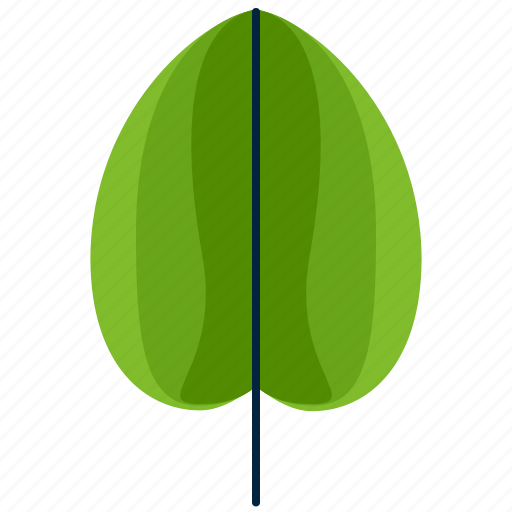forest, leaf, park, round, shape, tree icon