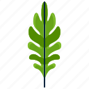 forest, leaf, park, sessile, shape, tree icon
