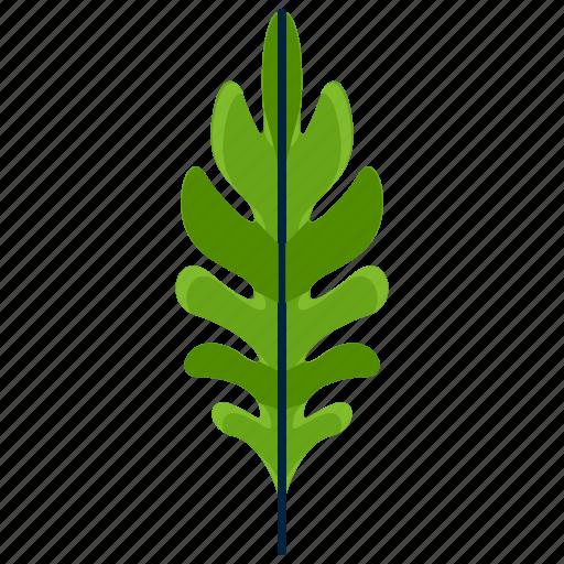 forest, leaf, park, sessile, shape, tree icon