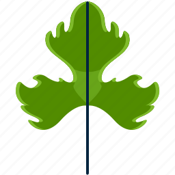 forest, leaf, park, shape, tree, tripinnate icon
