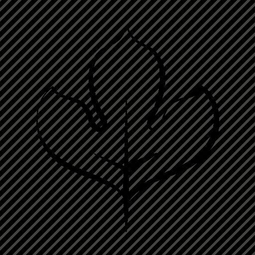 eco, hand drawn, leaf, nature, plant icon