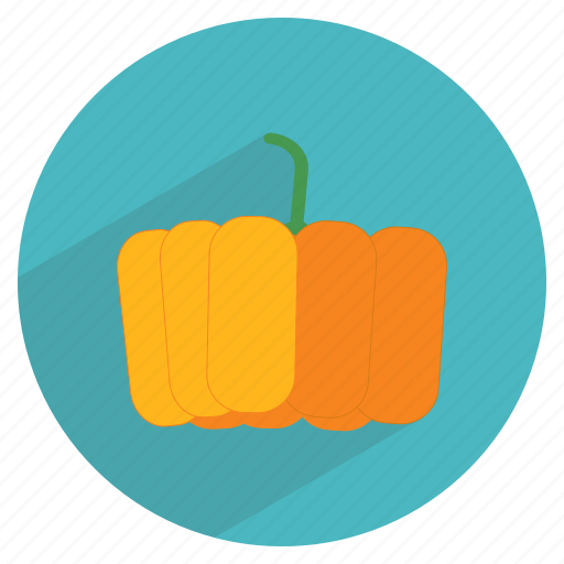 food, fresh, fruit, halloween, healthy, pumpkin, vegetable icon