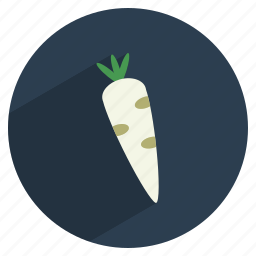food, healthy, kitchen, radish, vegetable icon