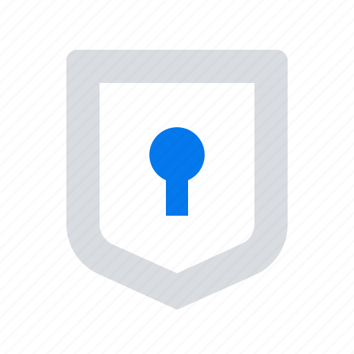 access, protection, shield icon