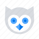 knowledge, owl, wisdom icon