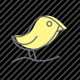 bird, life, style icon
