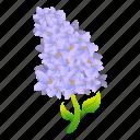 aroma, floral, flower, hand, lilac, retro