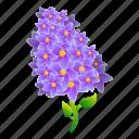 blossom, floral, flower, hand, lilac, wedding