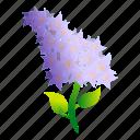 floral, flower, lilac, love, sunny, wedding