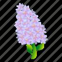 floral, flower, garden, lilac, wedding