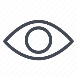 eye, observe, spy, visible, vision icon