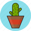 bowl, cactus, decorate, green icon