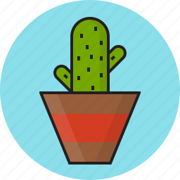 bowl, cactus, decorate, green icon
