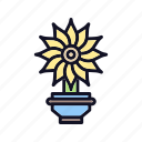 agriculture, ecology, flower, flowers, garden, pot, pot-flower icon
