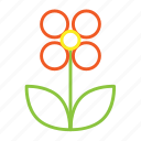 florist, local