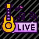 concert, entertainment, guitar, live, music