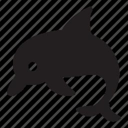 animal, dolphin, locations, ocean, sea, water, zoo icon