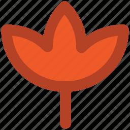 autumn, botany, fall leaf, foliage, maple leaf, nature, season icon