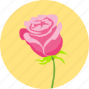floral, flower, love, romantic, rose, valentine, valentine's icon