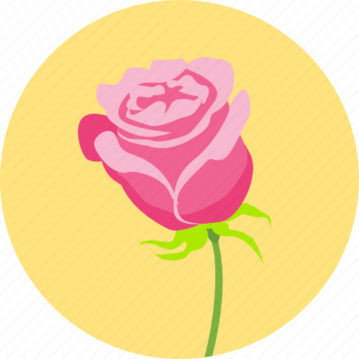 floral, flower, love, romantic, rose, valentine, valentine's icon