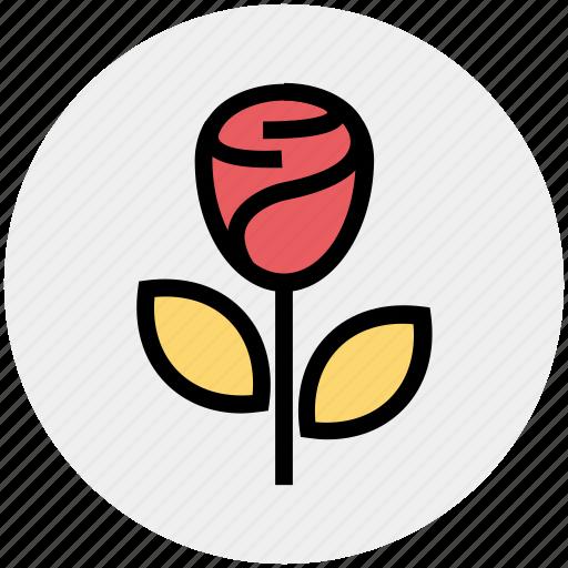 blooming flower, flower, heart, love, rose, rose blooming, valentine icon