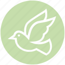 animal, bird, cute, dove, fly, flying, peace icon