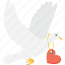 bird, love message, loving birds, pigeon, romance icon