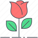 blossom, decoration, flower, love, romance, rose, valentines icon